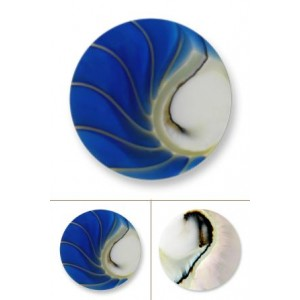 Nautilus azul tamaño grande