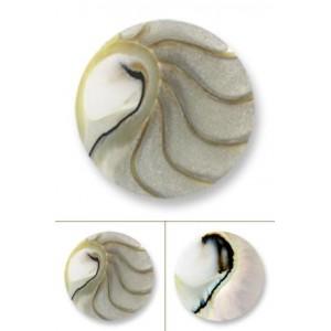 Nautilus deluxe gris tamaño mediano